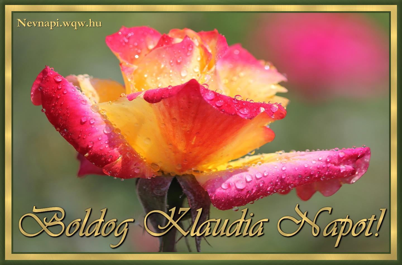 klaudia névnapi képek Klaudia névnapi kép   Zenés névnapi képeslapok és képek klaudia névnapi képek